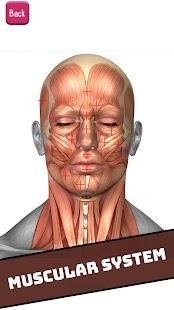 Human Visual Anatomy Atlas 3D - Bones Organs 2018 - náhled
