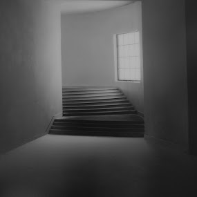 Going into the abis by Ioan G Hiliuta - Buildings & Architecture Architectural Detail ( interior, walls, stairs, black and white, museum, wall, room )