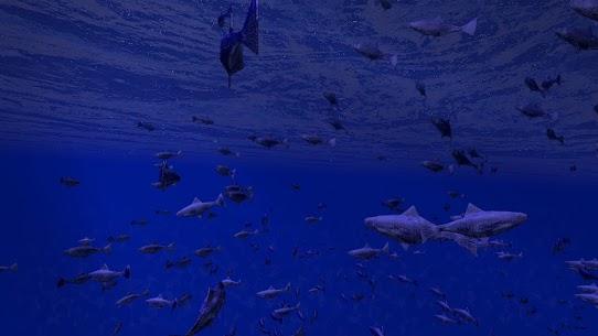 Be a Fish – VR Simulator 1