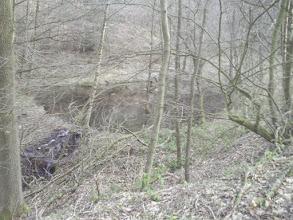Photo: Ein wasserführender Stauteich mit Schwimmvogelinselchen in der Hochspannungsleitungsschneise unterhalb des Grundstücks Tückinger Schulstraße 1 (Seitenarm des Funckenhausener Bachtals).