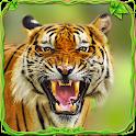 Furious Tiger Simulator 🐅 icon