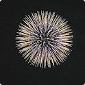 Fireworks Live Wallpaper HD icon