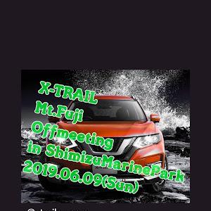 エクストレイル NT31 20x・23年式  元ディーラー試乗車のカスタム事例画像 toyo-kichiさんの2019年04月23日14:47の投稿