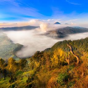 The Enchanting Bromo by Alexander Nainggolan - Landscapes Mountains & Hills ( mountain, tengger, indonesia, east java, bromo,  )