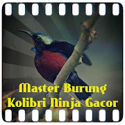 App Master Burung Kolibri Ninja Gacor Juara apk for kindle fire
