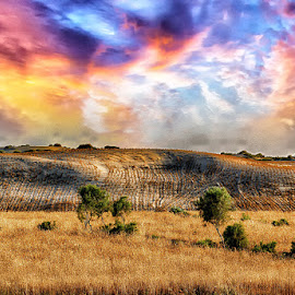 by Abdul Rehman - Landscapes Prairies, Meadows & Fields
