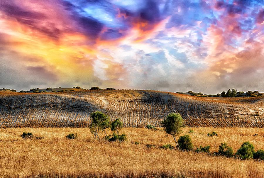 by Abdul Rehman - Landscapes Prairies, Meadows & Fields