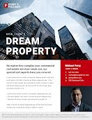 Dream Property - Real Estate Flyer item