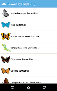 Audubon Butterflies- screenshot thumbnail
