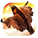 Heavenly Bird Fly Live Wallpap icon