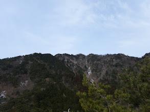 山頂を見上げ