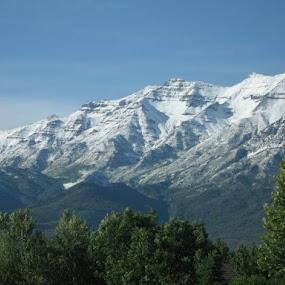Mount Timpanogas by LaDawn Park - Landscapes Mountains & Hills