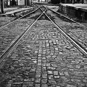 2 ways 1 direction by Carlos Cardoso - City,  Street & Park  Street Scenes ( b&w, railway, direction, ways )