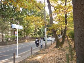 Photo: 小平都市計画道路3・2・8号線に並行して走る府中街道(二車線)