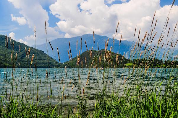 Al lago di emanuela_terzi