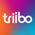 Triibo icon