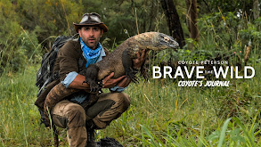 Coyote Peterson: Brave the Wild Coyote's Journal thumbnail