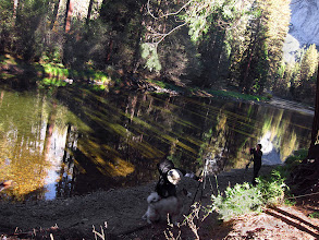 Photo: Merced River, reflections and shadows.  #2776