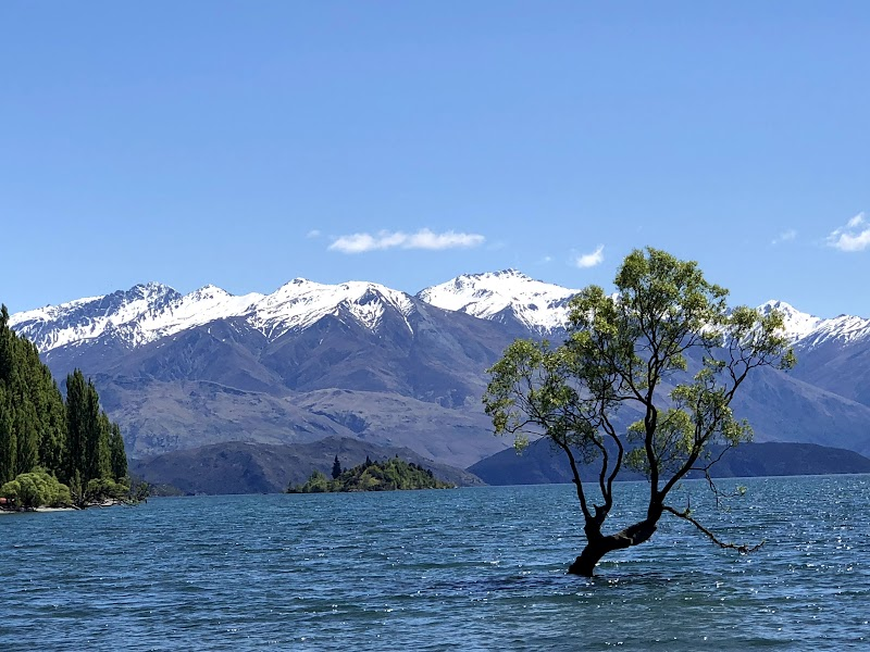 Queenstown to Wanaka