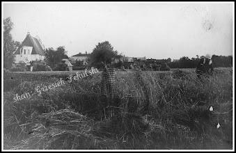 Photo: Żniwa (?) na polach pod miastem, z lewej strony widać kościół Św. Trójcy, a obok budynek Szkoły Powszechnej