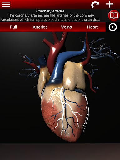 Circulatory System in 3D (Anatomy) 1.58 screenshots 20