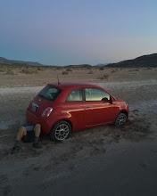 Photo: Fiat (caris stuckus)