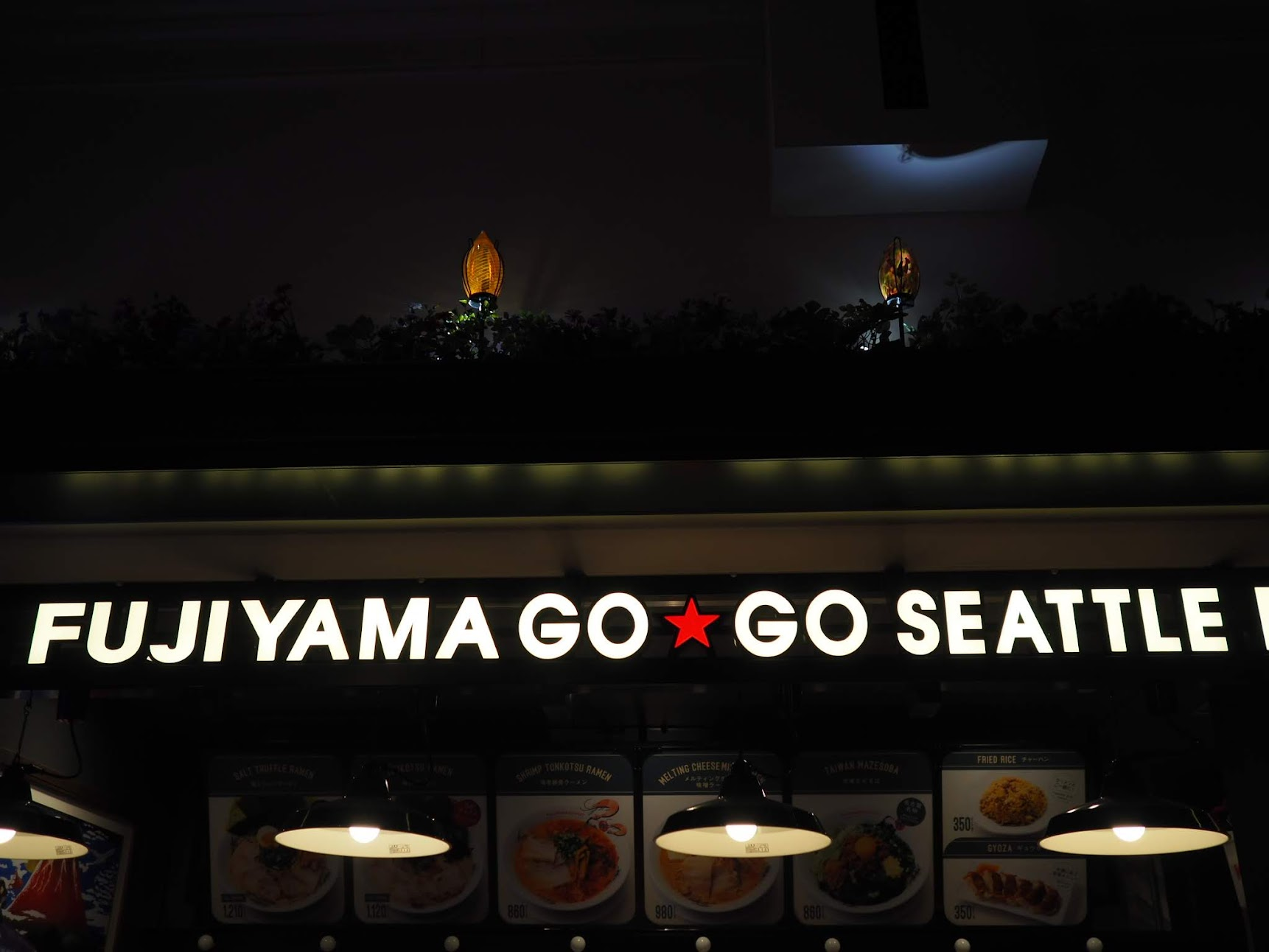 FUJIYAMA GO GO SEATTLE TERRACE
