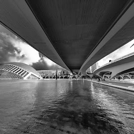 by -. Phœnix .- - Black & White Buildings & Architecture