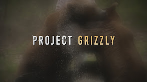 Project Grizzly thumbnail