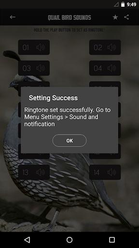音樂必備免費app推薦|ウズラの鳥サウンド線上免付費app下載|3C達人阿輝的APP