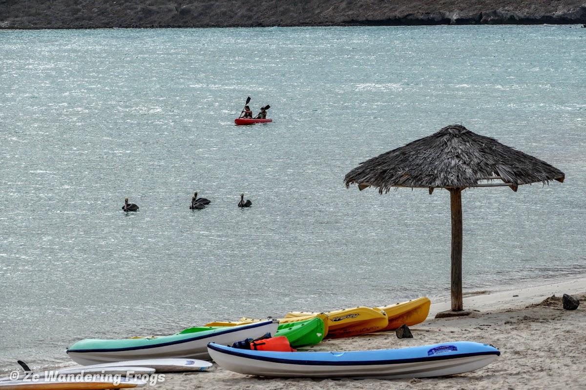 Kayaking in Balandra Beach