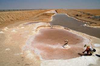 Photo: Chott El Djerid