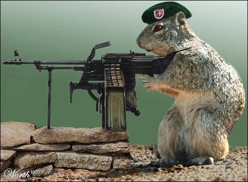 Logo of Grand River Squirrels with Guns