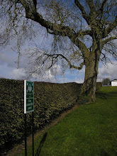 Photo: At Newgrange