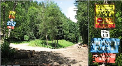 Photo: Se face stanga, se trece raul Prahova si se intra pe un drum forestier... cu niste transee...