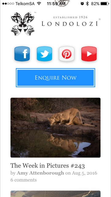 Londolozi Private Game Reserve- screenshot