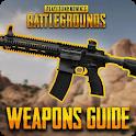 Battleground Weapon Guide icon