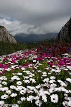 Photo: Banff