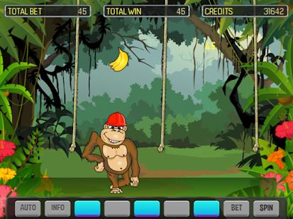 Crazy Monkey Deluxe - náhled