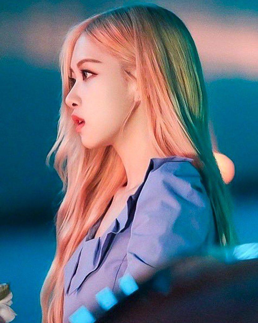 rose profile 12