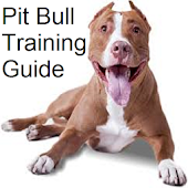 Pit Bull Training Guide