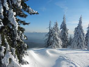 Photo: 22 Mittagsplatzl: Schneesturm vertreibt den Schneeschuhgeher schnell wieder. (1. Februar 2012)