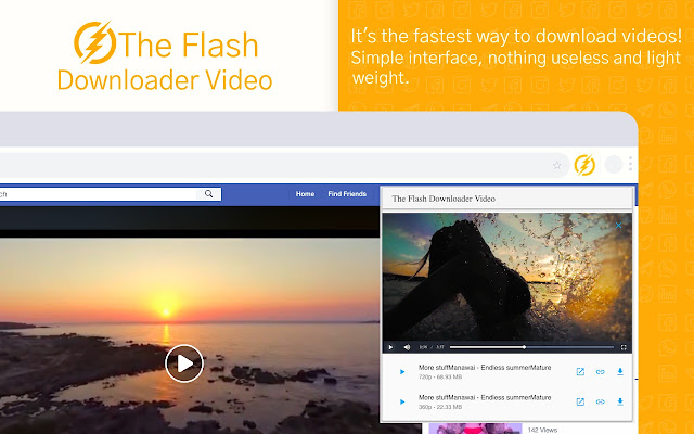 The Flash Downloader Video