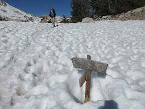 Photo: Goodale Pass trail junction (10,500 feet)