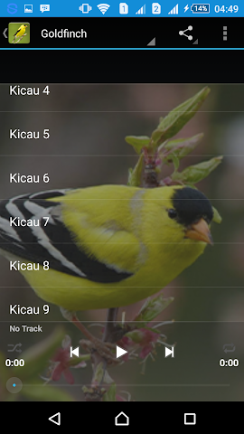 android Singing Goldfinch Screenshot 2