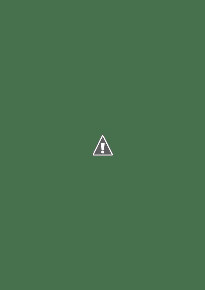 No ar, O Poder Popular nº 29: REVOLUÇÃO E CARNAVAL