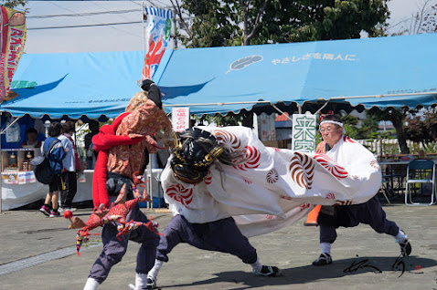 躍動感溢れる獅子舞の演舞