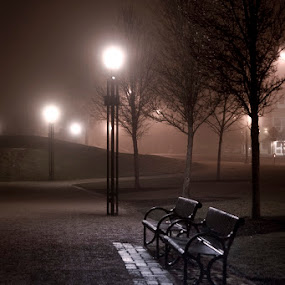 Solitude by Marie Browning - City,  Street & Park  Night ( lights, benches, park, trees, night,  )