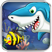Hungry Shark - Shark Fever 1.0.2