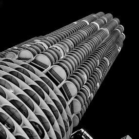 Chicago familiarities...... by Bob Stafford - Buildings & Architecture Architectural Detail ( popular building, b&w, chicago, evening, marina city i )